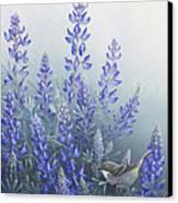 Lupine Canvas Print by Mike Stinnett