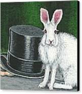 Mad March Hare -- Now You See How It Feels Canvas Print by Sherry Goeben