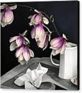 Magnolia Still Canvas Print by Diana Angstadt