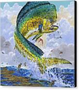 Mahi Hookup Off0020 Canvas Print by Carey Chen