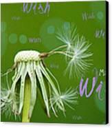 Make A Wish Card Canvas Print by Lisa Knechtel