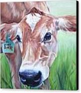 Manchas Canvas Print by Kelci Pauk