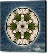 Manifesting Abundance Canvas Print by Alicia Kent