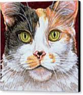 Marigold Canvas Print by Ditz