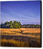 Marsh Hammock Canvas Print by Marvin Spates