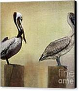 Me And My Missus Canvas Print by Betty LaRue