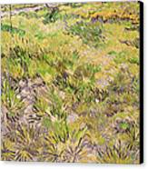 Meadow With Butterflies Canvas Print by Vincent Van Gogh