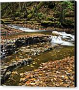 Meandering Waters Canvas Print by Christina Rollo
