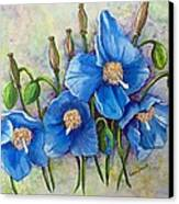 Meconopsis    Himalayan Blue Poppy Canvas Print by Karin  Dawn Kelshall- Best
