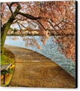 Meet Me At Our Bench Canvas Print by Lois Bryan