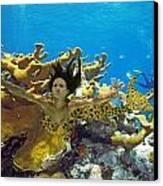 Mermaid Camoflauge Canvas Print by Paula Porterfield-Izzo