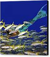 Merman Canvas Print by Paula Porterfield-Izzo