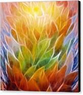 Metamorphosis Canvas Print by Ann Croon