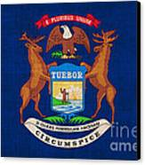 Michigan State Flag Canvas Print by Pixel Chimp
