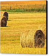 Midwest Farming Canvas Print by Frozen in Time Fine Art Photography