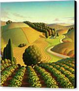 Midwest Vineyard Canvas Print by Robin Moline
