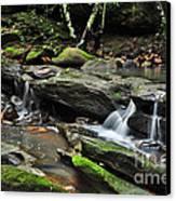 Mini Waterfalls Canvas Print by Kaye Menner