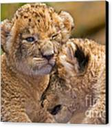 Minor Collision Canvas Print by Ashley Vincent