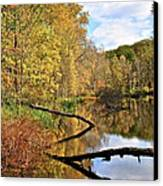 Mirror Mirror On The Floor Canvas Print by Frozen in Time Fine Art Photography