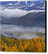 Misty Day In The Cairngorms Canvas Print by Louise Heusinkveld