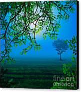 Misty Night Canvas Print by Bedros Awak
