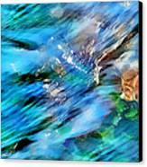 Misty Waters 2 Canvas Print by Terril Heilman