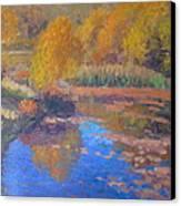 Monets Pond. Whitechapple Canvas Print by Terry Perham