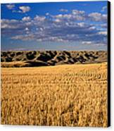 Montana   Field And Hills Canvas Print by Anonymous