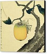 Moon Persimmon And Grasshopper Canvas Print by Katsushika Hokusai