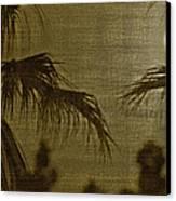 Moons Glow Canvas Print by Gilbert Artiaga