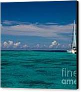 Moorea Lagoon No 16 Canvas Print by David Smith