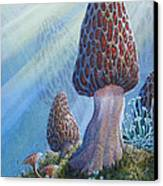 Morel Mushrooms Canvas Print by Mike Stinnett