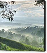 Morning Mist Canvas Print by Heiko Koehrer-Wagner