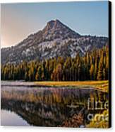 Morning Mist Canvas Print by Robert Bales