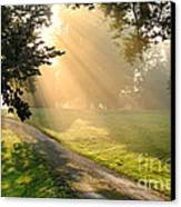 Morning On Country Road Canvas Print by Olivier Le Queinec