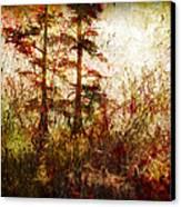 Morning Sunrise Burst Of Color Canvas Print by J Larry Walker