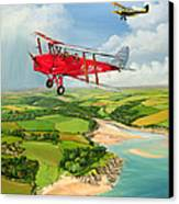 Mothecombe Moths Canvas Print by Richard Wheatland