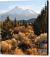 Mount Shasta In The Fall  Canvas Print by Gary Whitton