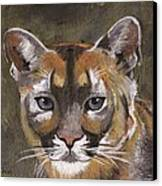 Mountain Cat Canvas Print by Jamie Frier