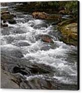 Mountain Stream Canvas Print by Skip Willits