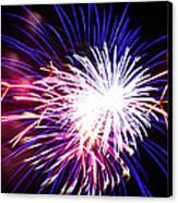 4th Of July Fireworks 15  Canvas Print by Howard Tenke