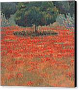 My Non-metaphysical Tree Canvas Print by Valerie Douglas