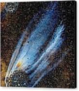Mysterious Traveler Canvas Print by Samuel Sheats