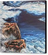Mysterious Water Canvas Print by Cheryl Pettigrew