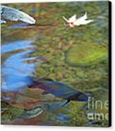 Mystic Waters Canvas Print by James Lady