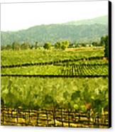 Napa Canvas Print by Paul Tagliamonte