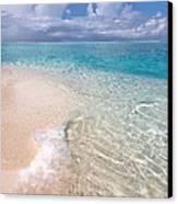 Natural Wonder. Maldives Canvas Print by Jenny Rainbow