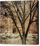 New Mexico Winter Canvas Print by Carol Leigh