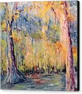 Nlr Lake Study  Canvas Print by Robin Miller-Bookhout