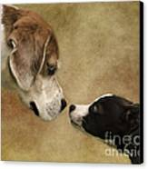 Nose To Nose Dogs Canvas Print by Linsey Williams